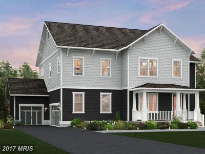 Loudoun Single Family Home For Sale: Spanglegrass Court #5