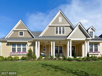 Loudoun Single Family Home For Sale: 25830 Yellow Birch Court