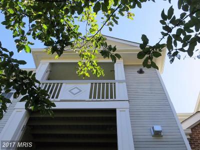 Ashburn Condo For Sale: 20311 Beechwood Terrace #300