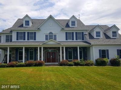 Loudoun Single Family Home For Sale: 40918 Pacer Lane