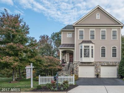 Ashburn Single Family Home For Sale: 43746 Carrleigh Court