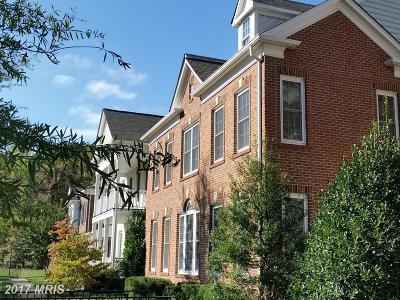 Leesburg Rental For Rent: 20809 Red Cedar Drive