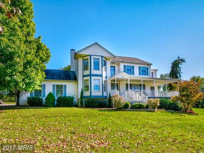 Lovettsville Single Family Home For Sale: 11480 Berlin Turnpike