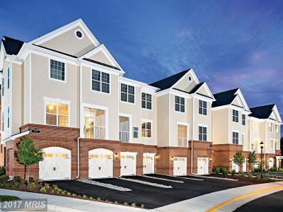 Ashburn Condo For Sale: 23271 Southdown Manor Terrace #104
