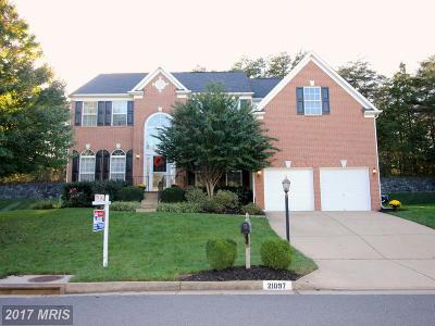 Ashburn Single Family Home For Sale: 21097 Carthagena Court