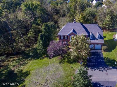 Leesburg Single Family Home For Sale: 43305 Hill Head Place