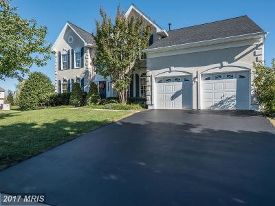 Ashburn Single Family Home For Sale: 43648 Cather Court