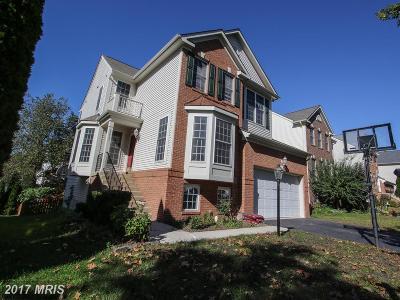 Chantilly Single Family Home For Sale: 25933 Flintonbridge Drive