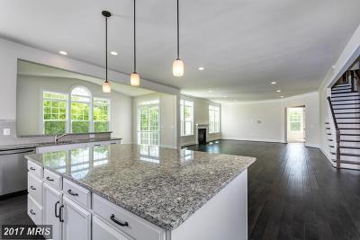 Aldie Single Family Home For Sale: Deep Dale Court