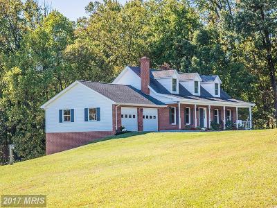 Leesburg Single Family Home For Sale: 41739 Stumptown Road