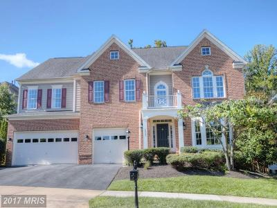 Leesburg Single Family Home For Sale: 18787 Thomas Lee Way