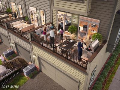 Brambleton Townhouse For Sale: 23006 Lavallette Square