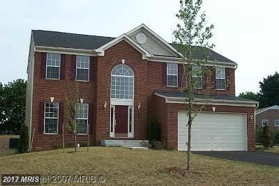 Leesburg Single Family Home For Sale: 255 Elia Court SE