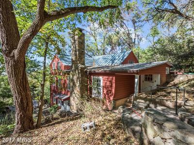 Leesburg Single Family Home For Sale: 13195 Pinnacle Lane