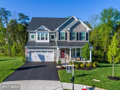 Aldie Single Family Home For Sale: 41829 Walden Knoll Court