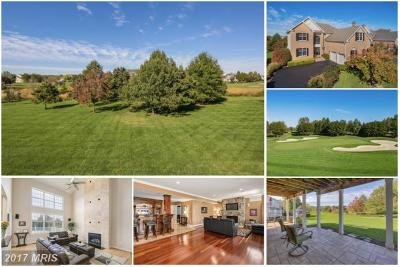 Belmont Country Club Single Family Home For Sale: 19963 Palmer Classic Parkway