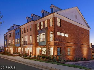 Ashburn Townhouse For Sale: 22555 Amendola Terrace