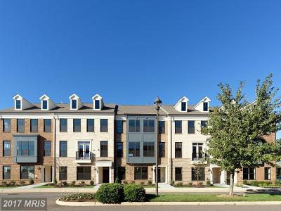 Ashburn Townhouse For Sale: 22557 Amendola Terrace