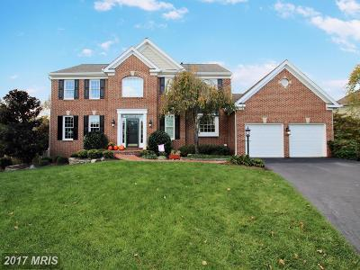 Broadlands, Broadlands South Single Family Home For Sale: 42867 Autumn Harvest Court