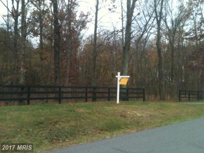 Leesburg Residential Lots & Land For Sale: Spinks Ferry Road