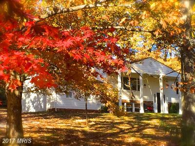 Leesburg Single Family Home For Sale: 41756 Stumptown Road