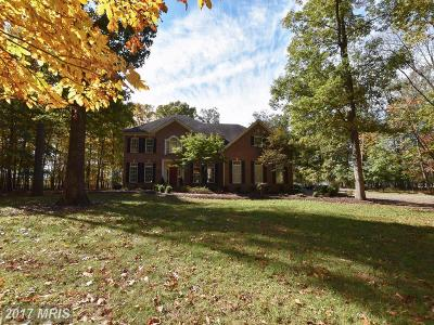 Loudoun Single Family Home For Sale: 42621 Spinks Ferry Road