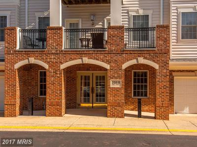 Sterling Condo For Sale: 20810 Noble Terrace #103