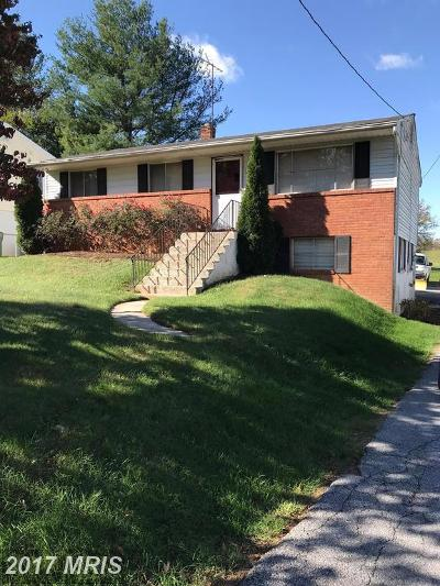 Middleburg Single Family Home For Sale: 114 Madison Street