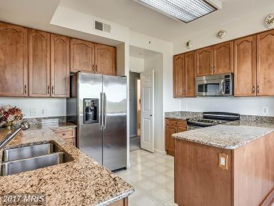 Leesburg Condo For Sale: 19355 Cypress Ridge Terrace #418
