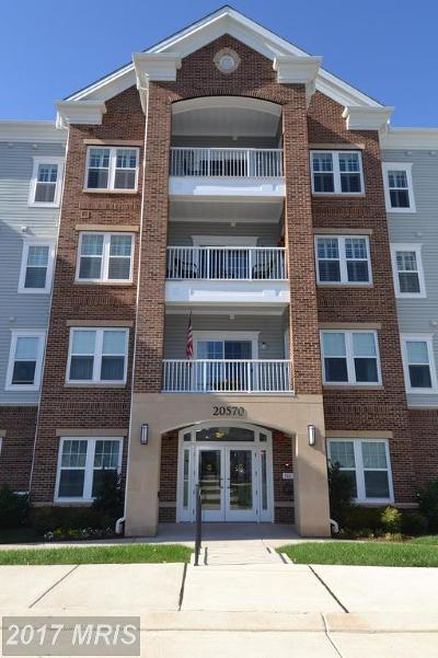 Ashburn Condo For Sale: 20570 Hope Spring Terrace #406