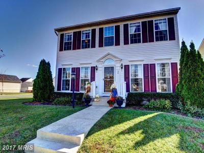 Loudoun Single Family Home For Sale: 26 Lovett Drive