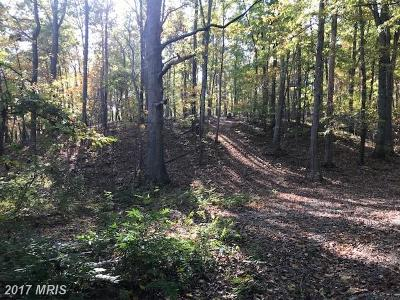 Aldie Residential Lots & Land For Sale: 24109 New Mountain Road