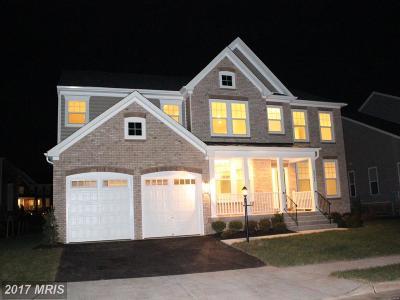 Ashburn Single Family Home For Sale: 42304 Birnam Wood Place