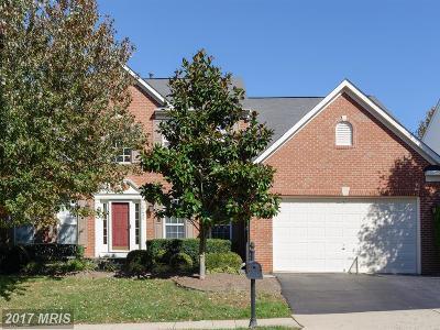 Loudoun Single Family Home For Sale: 47424 River Falls Drive