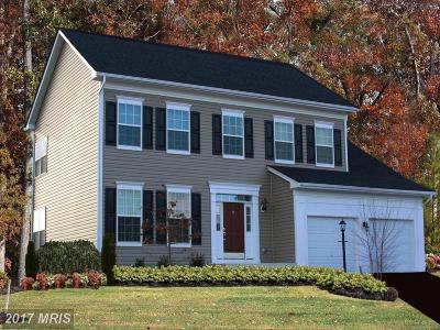 Loudoun Single Family Home For Sale: Pencoast Drive