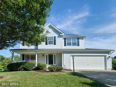Loudoun Single Family Home For Sale: 516 Rosemary Lane