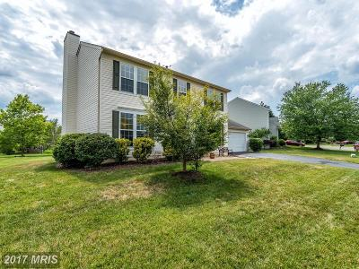 Loudoun Single Family Home For Sale: 20727 Fenwick Drive
