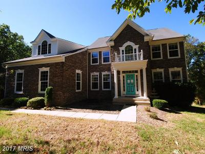 Round Hill Single Family Home For Sale: 17249 Grand Valley Court
