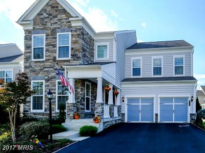 Ashburn Single Family Home For Sale: 42603 Callalily Way