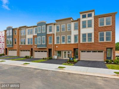 Loudoun Townhouse For Sale: 24466 Hawthorn Thicket Terrace