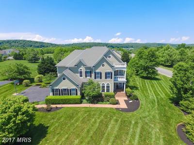 Leesburg Single Family Home For Sale: 16613 Elk Run Court