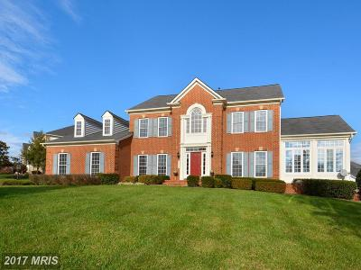Ashburn Single Family Home For Sale: 22350 Dolomite Hills Drive