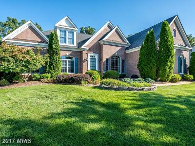Ashburn Single Family Home For Sale: 42834 Falling Leaf Court