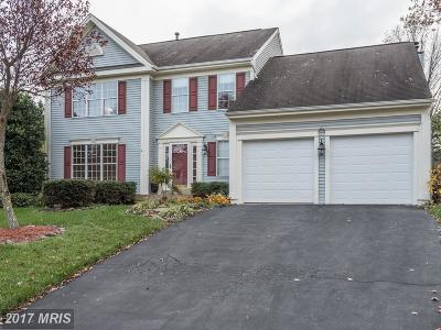 Leesburg Single Family Home For Sale: 209 Ashton Drive SW