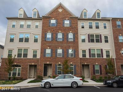 Aldie Townhouse For Sale: 26021 Braided Mane Terrace