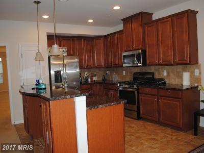 Ashburn Rental For Rent: 21588 Zuknick Terrace
