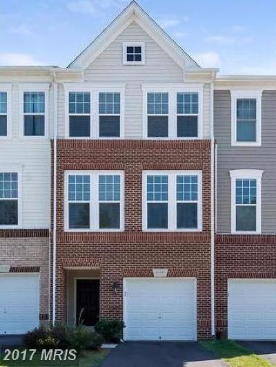 Ashburn Rental For Rent: 43447 Rickenbacker Square