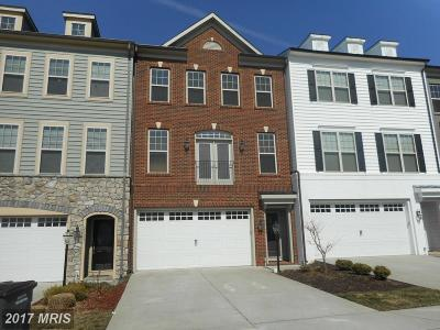 Ashburn Rental For Rent: 22199 Falling Terrace