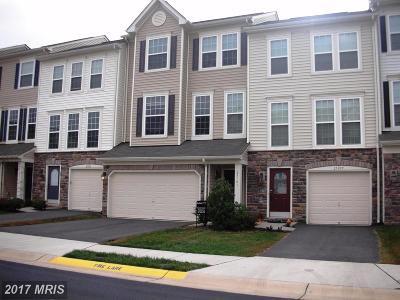 Aldie Rental For Rent: 25101 Green Mountain Terrace