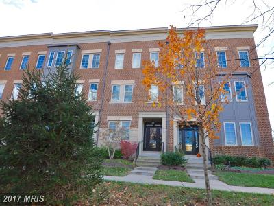 Ashburn Townhouse For Sale: 42242 Bliss Terrace